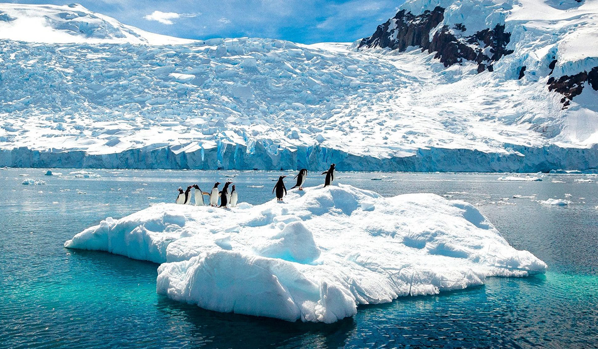 Website-Blog-Seabourn-Antarctic