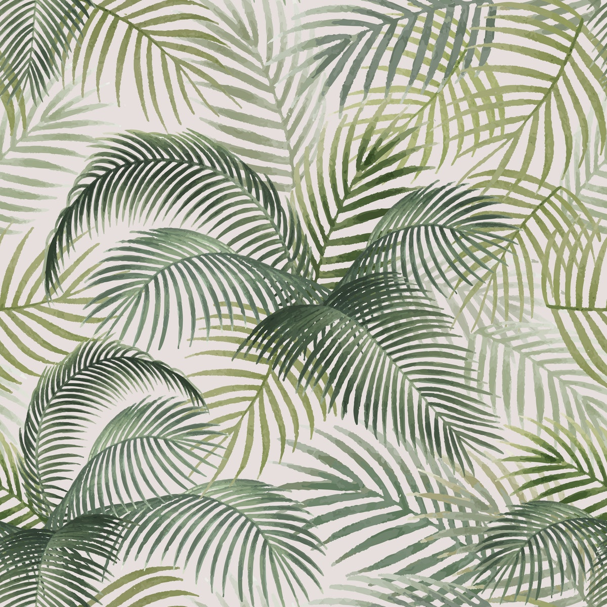 tropical-palm-background-123