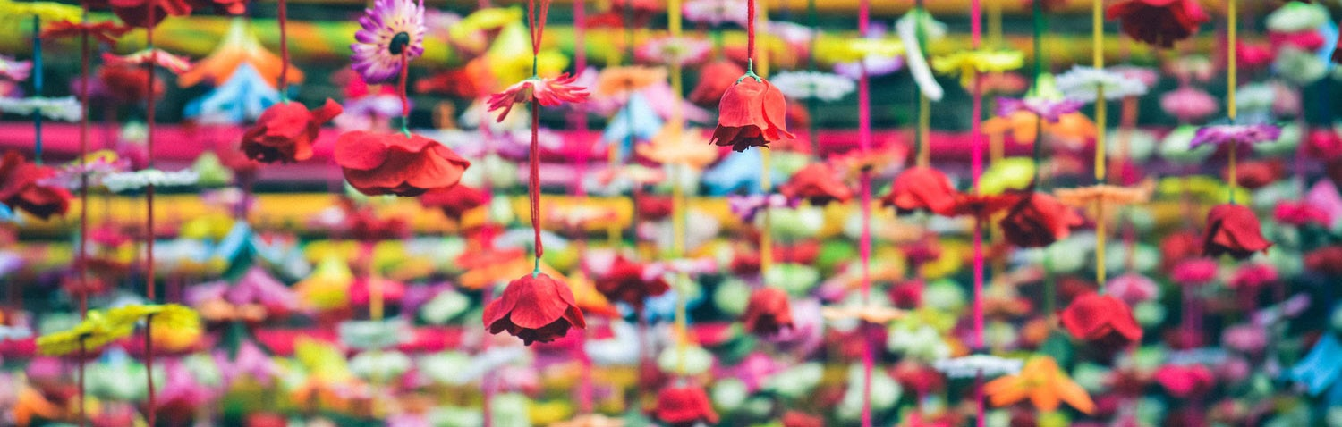 colorful hanging flowers