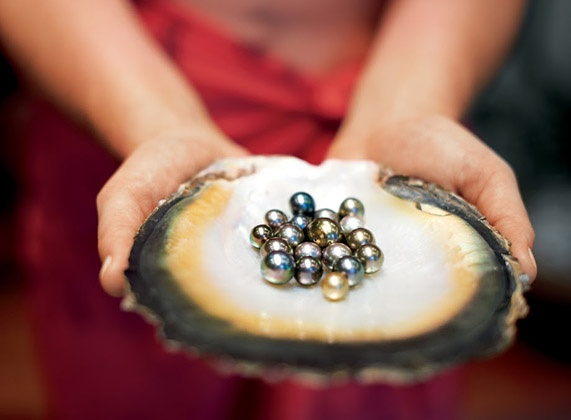 Hands holding oyster full of black pearls