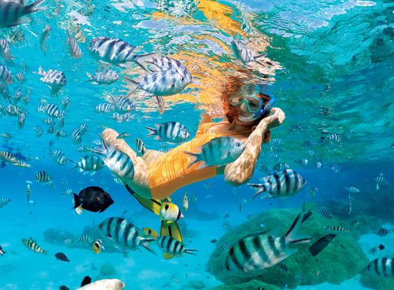 Girl Snorkelling with fish crystal clear water French Polynesia