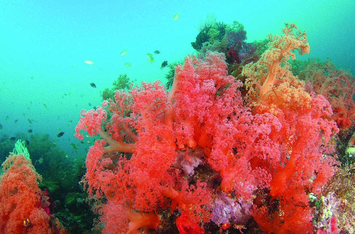 Romblon Island, Philippines