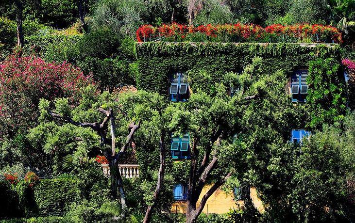 Lush green scenery Italy flora