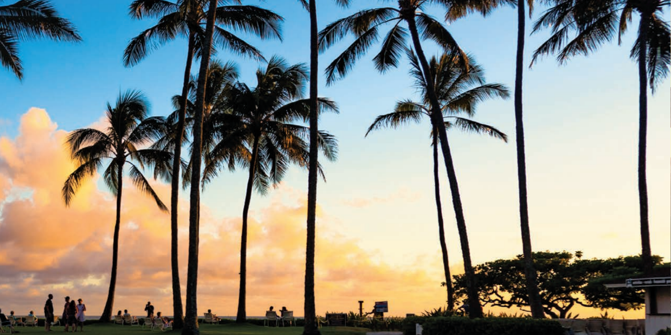 Escape To Hawaii With Pleasant Holidays